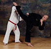 burntwood and cannock taekwondo instructor sean hardwick demonstrates a hook kick