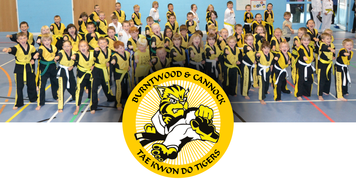the burntwood and cannock taekwondo tigers